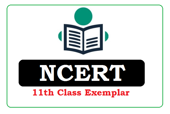 NCERT 11th Class Exemplar 2020 Pdf Download (*All Subject)